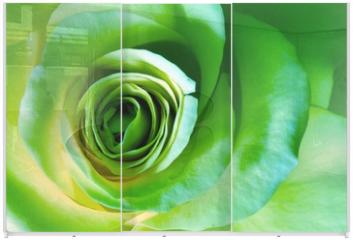 Panel szklany do szafy przesuwnej - green rose
