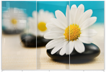 Panel szklany do szafy przesuwnej - Wellness