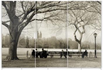 Panel szklany do szafy przesuwnej - central park
