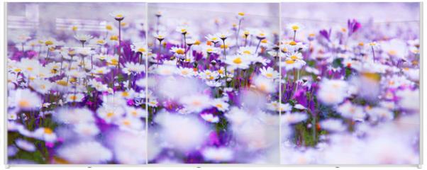 Panel szklany do szafy przesuwnej - Daisy field