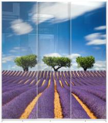 Panel szklany do szafy przesuwnej - Lavande Provence France / lavender field in Provence, France
