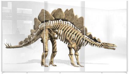 Panel szklany do szafy przesuwnej - Stegosaurus Skeleton