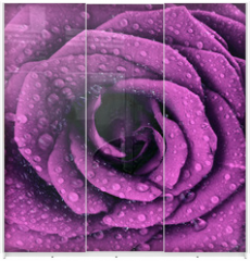 Panel szklany do szafy przesuwnej - Purple dark rose background