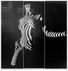 Panel szklany do szafy przesuwnej - posing in darkness