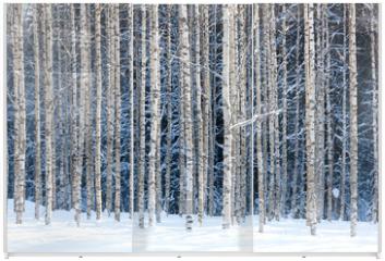 Panel szklany do szafy przesuwnej - Snowy birches