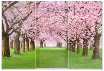 Panel szklany do szafy przesuwnej - Gartenanlage in voller Blütenpracht