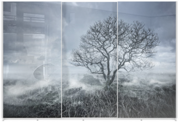 Panel szklany do szafy przesuwnej - Beautiful Bleakness