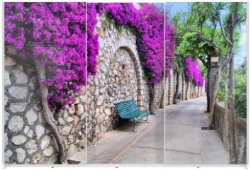 Panel szklany do szafy przesuwnej - Vibrant flower draped pathway in Capri, Italy