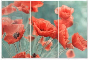 Panel szklany do szafy przesuwnej - red poppy flowers