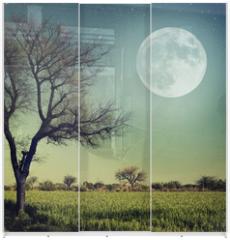 Panel szklany do szafy przesuwnej - Nature-68