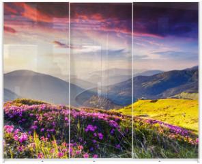 Panel szklany do szafy przesuwnej - nature
