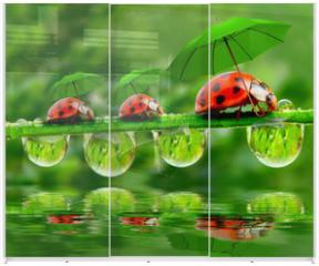 Panel szklany do szafy przesuwnej - Little ladybugs with umbrella.
