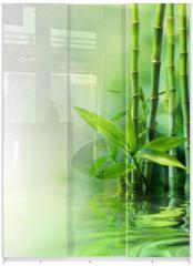 Panel szklany do szafy przesuwnej - bamboo stalks on water - blurs
