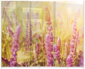 Panel szklany do szafy przesuwnej - Violet  meadow flower
