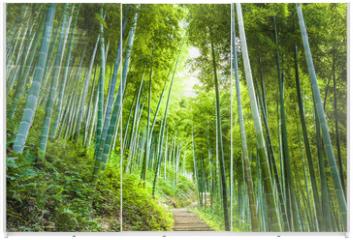 Panel szklany do szafy przesuwnej - Bamboo forest and walkway