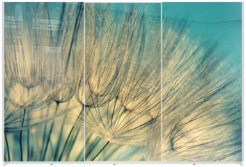 Panel szklany do szafy przesuwnej - Blue abstract dandelion flower background