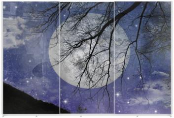 Panel szklany do szafy przesuwnej - Magic night view