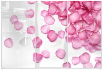 Panel szklany do szafy przesuwnej - Petals of pink rose