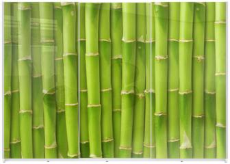Panel szklany do szafy przesuwnej - green bamboo background