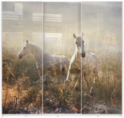 Panel szklany do szafy przesuwnej - white horse galloping on meadow