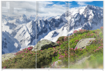 Panel szklany do szafy przesuwnej - Beautiful flowers with Alps mountains.