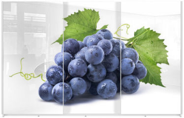 Panel szklany do szafy przesuwnej - Blue wet grapes bunch isolated on white background