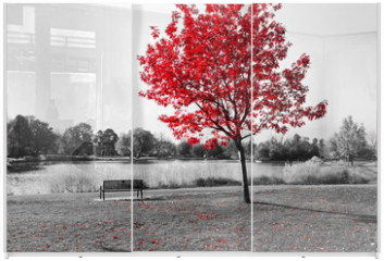 Panel szklany do szafy przesuwnej - Red Tree Over Park Bench