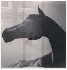 Panel szklany do szafy przesuwnej - pferd von unten