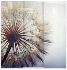 Panel szklany do szafy przesuwnej - big dandelion on a blue background