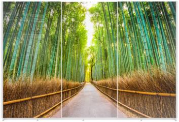 Panel szklany do szafy przesuwnej - Bamboo Forest of Kyoto, Japan