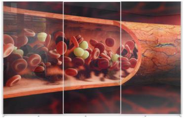 Panel szklany do szafy przesuwnej - blood cells flowing through a vein