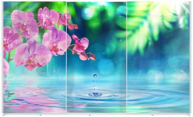 Panel szklany do szafy przesuwnej - orchid in zen garden with droplet on pond