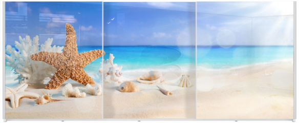Panel szklany do szafy przesuwnej - seashells on seashore in tropical beach - summer holiday background