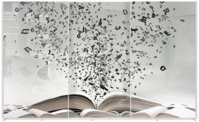 Panel szklany do szafy przesuwnej - Opened book