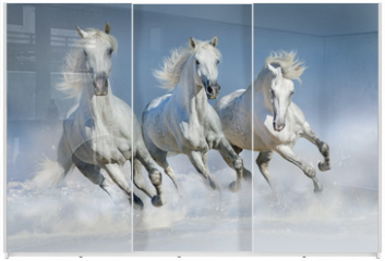 Panel szklany do szafy przesuwnej - Three white horse run gallop in snow