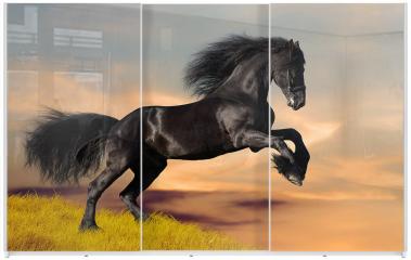 Panel szklany do szafy przesuwnej - Koń fryzyjski galopujący o wschodzie słońca