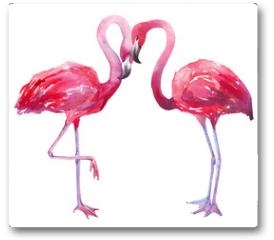 Plakat - watercolor illustration of a flamingo