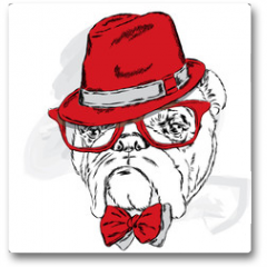 Plakat - Funny bulldog vector. Bulldog wearing a hat with glasses and tie.