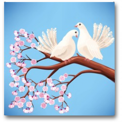 Plakat - Two white doves on the branch