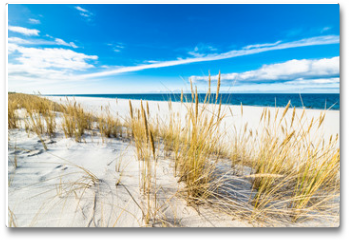 Plakat - Sea landscape with sandy dunes and grass