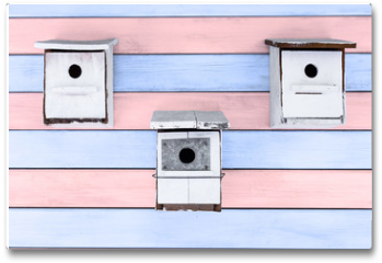 Plakat - tres cajas nido blancas sobre fondo de madera rosa y azul