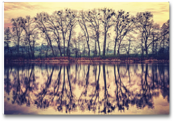 Plakat - Vintage toned tree silhouettes reflected in a lake.