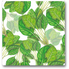 Plakat - Seamless pattern of hand drawn spinach