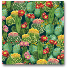 Plakat - pattern with blooming cactuses