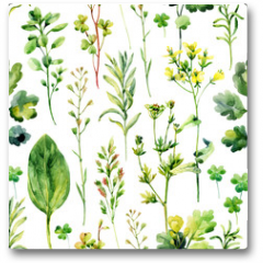 Plakat - Watercolor meadow weeds and herbs seamless pattern