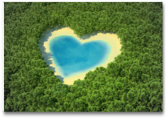 Plakat - Heart-shaped pond in a tropical forest