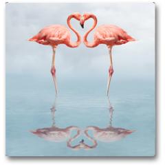 Plakat - making love