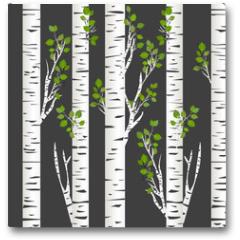 Plakat - Birch trunks in night