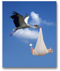 Plakat - Stork & Baby