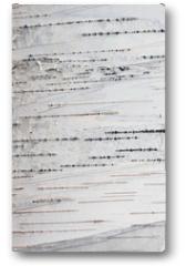 Plakat - Paper Birch Bark Background